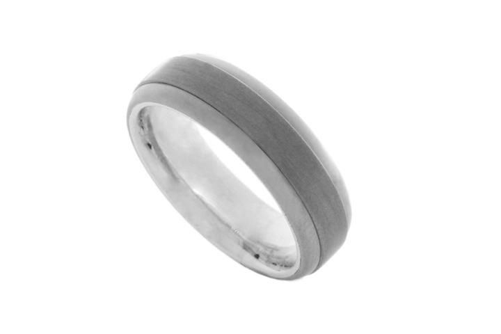 Titanium & Silver D-shaped ring
